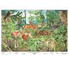 Stiefel Eurocart Kft. Az erdő életközössége    ajándék 10 db munkalap tankönyv