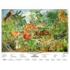 Stiefel Eurocart Kft. Az erdő életközössége
