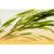 Naturhelix teafa fülgyertya