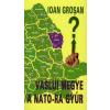 Ioan Grosan Vaslui megye a NATO-ra gyúr