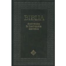 BIBLIA - KÖZEPES, ÚJ FORDÍTÁSÚ vallás