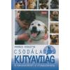 Kovács Violetta Csodálatos kutyavilág