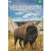 Yellowstone (DVD)