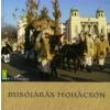 BUSÓJÁRÁS MOHÁCSON
