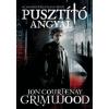 Jon Courtenay Grimwood PUSZTÍTÓ ANGYAL - A bérgyilkosok trilógia első része