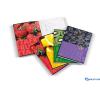 PIGNA Fruits gyűrűskönyv A4 4 gyűrűs füzet