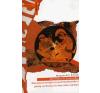 Gondolat Kiadó Akhilleusz és Szókratész - Morálpszichológia és politikafilozófia a görög archaikus és klasszikus korban társadalom- és humántudomány