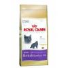 Royal Canin FBN British Shorthair 34 10 kg