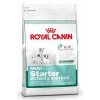 Royal Canin Mini Starter Mother&Babydog 1 kg