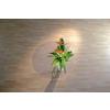 RS OFFICE Székalátét, kemény felületre, T forma, 150x120 cm, RS OFFICE