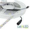 Whitenergy |5m|LED 5050|30db/m|7.2W/m|12V DC|5500-6500K|h.fehér LED szalag