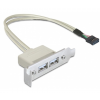 DELOCK Slot bracket USB 2.0 low profile 2 port