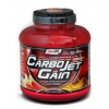 AMIX CARBOJET GAIN - POWERFUL CARBO-PROTEIN MATRIX - 4,9 LBS - 2250 G (HG)