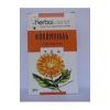 Herbatrend körömvirág gyógynövénytea, 30 g