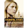 Andrew Kaplan Homeland - Carrie futása