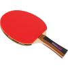 Buffalo Dominator ping pong ütő