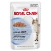 Royal Canin FHN WET Ultra Light 12 x 85 g
