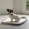 Savic Puppy Trainer kezdő készlet - méret M + 7 betét