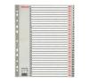 ESSELTE Regiszter, műanyag, A4 Maxi, 1-31, ESSELTE, szürk regiszter és tartozékai