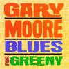 Gary Moore Blues for Greeny CD