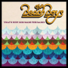 The Beach Boys That'S Why God Made The Radio CD