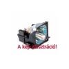 ProjectionDesign F3+ XGA eredeti projektor lámpa modul