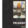 Sík Csaba - Picasso