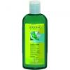 Logona BIO Aloe&Verbéna Daily Care testápoló 200 ml