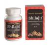 Garuda Ayurveda Shilajit kapszula 60 db gyógyhatású készítmény