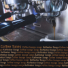 COFFEE TUNES CD COFFEE TUNES zenei CD kávézó hangulat
