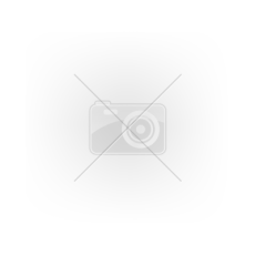 NEMMEGADOTT munkavédelmi bakancs Hammer vízálló (43)