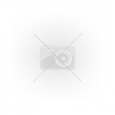 NEMMEGADOTT munkavédelmi félcipő Hammer vízálló (46)