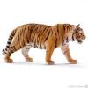 SC 14729 Tigris