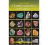 Bioenergetic Kiadó A kristálygyógyászat tankönyve ajándékkönyv