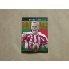 Topps 2014 Topps Premier Gold Soccer Captains Green #CS-RS Ryan Shawcross