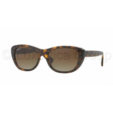 Ray-Ban RB4227 710/T5 LIGHT HAVANA BROWN GRADIENT POLAR napszemüveg (RB4227__710_T5)