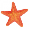 Trixie trx/8866 tengeri csillag/db