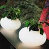Azzardo Asztali lámpa FLORA - világító kaspó