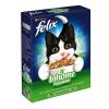 FELIX Inhome Sensations - 2 kg