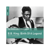 B.B. King The Rough Guide To Blues Legends - B.B. King Birth ... (Reborn and Remastered) (Limited Edition) LP