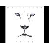 White Lion Pride LP