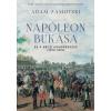 ZAMOYSKI, ADAM - NAPÓLEON BUKÁSA ÉS A BÉCSI KONGRESSZUS (1814-1815)