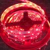 Life Light Led Led szalag piros 4,8W 240 Lumen (DEKOR minőség) 1 év gar. led