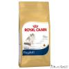 Na Royal Canin Ragdoll, 10kg