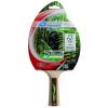 Donic Ütő do Tenisz táblázat DONIC Green Line 600