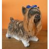 Kutya-Yorki-álló/kicsi