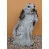 Kutya-Spaniel-ülő