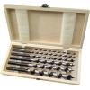 EXTOL PREMIUM EXTOL fafúró klt. 6 db, 6-8-10-12-16-20×260mm, csavaros heggyel, hatszög befogás; fa dobozban