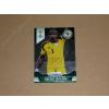 Panini 2014 Panini Prizm World Cup #150 Vincent Enyeama
