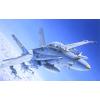 Italeri F/A 18 WILD WEASEL C/D katonai repülő makett Italeri 0016